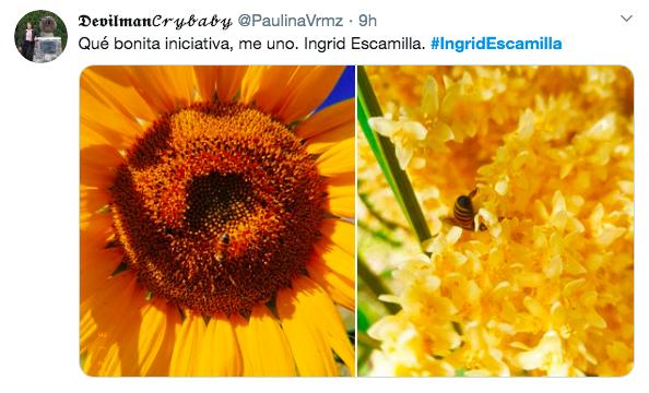 flores ingrid escamilla